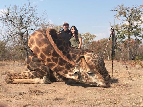 Public Buzz : Photos : après Cecil le lion, une nouvelle chasseuse fait bondir la toile !