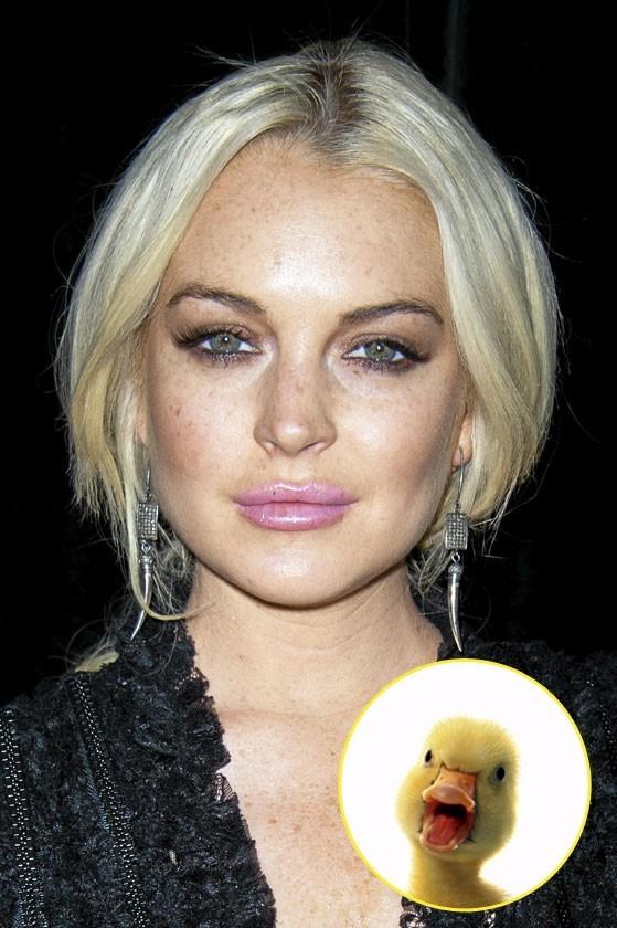 Lindsay Lohan : en voilà  un joli petit canard boiteux…