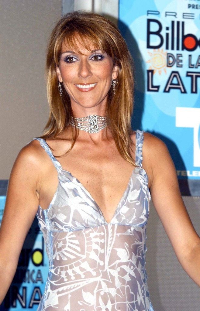 Coiffures De Star : L'évolution Capillaire De Céline Dion ...