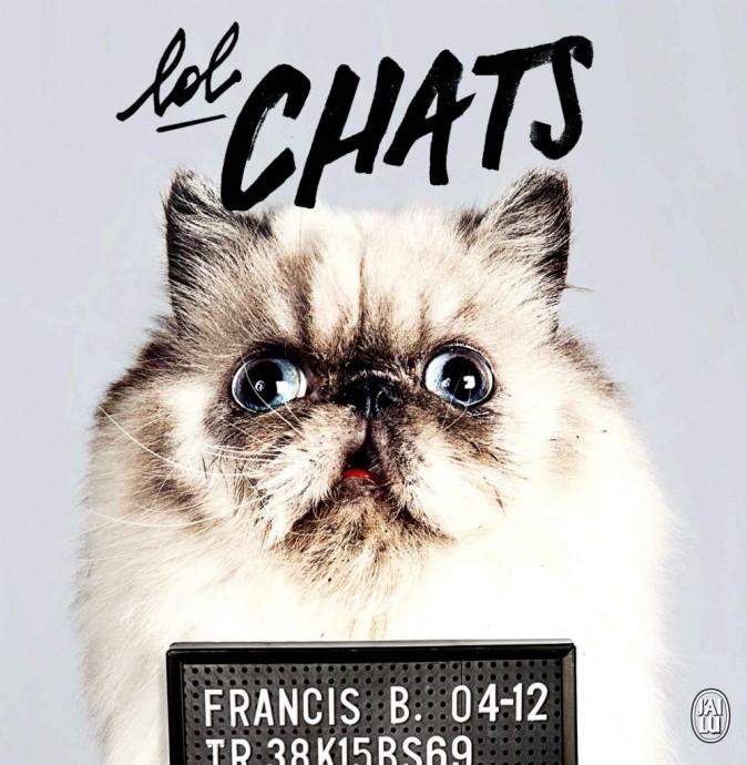 Livre Lol Chats, de Anaïs Carayon et Josselin Bordat, J'ai Lu, 10,50 €