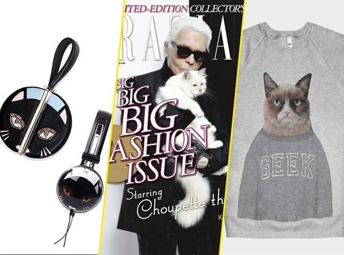 Choupette par Karl Lagerfeld, Grumpy Cat, Marmite par Diane Von Furstenberg... quand les chats font rugir la mode !