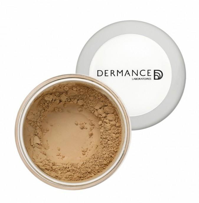 Poudre naturelle Fond de teint hydratant minéral, Skinlight, Dermance 35 €