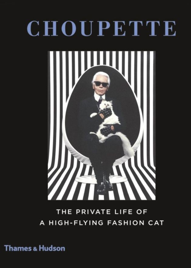"Couverture du livre ""The private life of a High-flying fashion cat"""