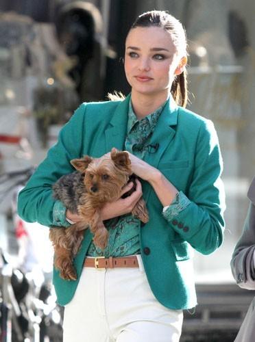 Miranda Kerr avec son petit chien Frankie