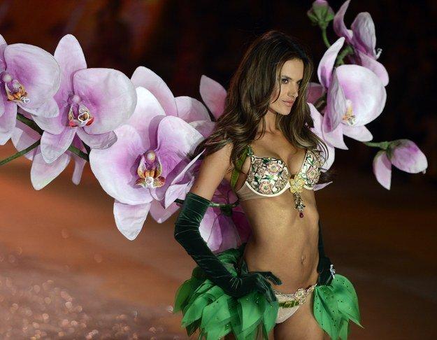 Alessandra Ambrosio porte le Floral Fantasy Bra & Gift Set à 2,5 millions de dollars