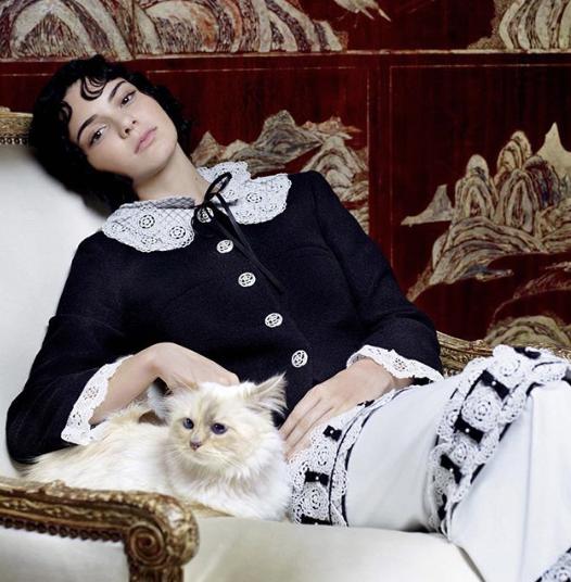 Choupette et Kendall Jenner pour Vogue