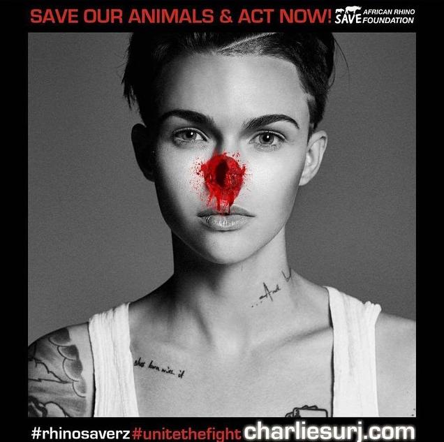 Ruby Rose pour sauver les rhinocéros d'Afrique !