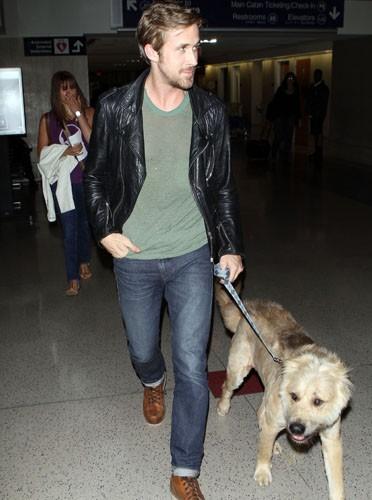 Ryan Gosling : Le nouveau it boy