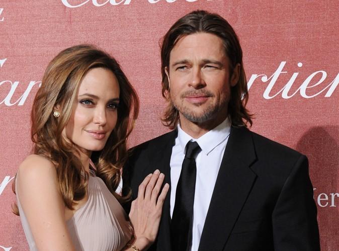 Angelina Jolie et Brad Pitt : ils vont maintenant produire leur propre vin !