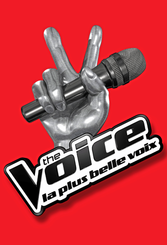 Audiences télé du week-end : The Voice s'impose très largement !