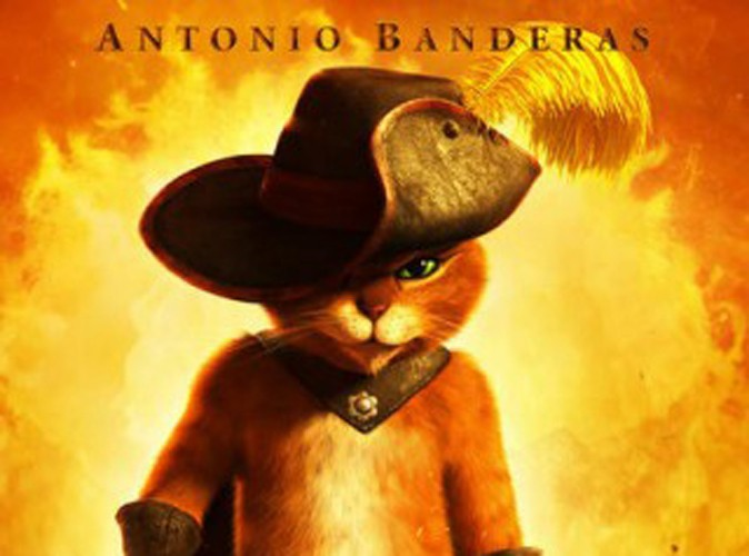 Box Office Us : le Chat Potté griffe le classement !