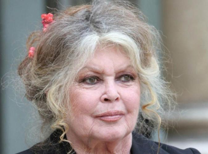 Brigitte Bardot interpelle la chatte de Karl Lagerfeld !