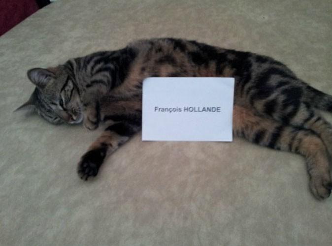 Frédérique Bel : de retour sur Twitter, elle montre sa chatte !