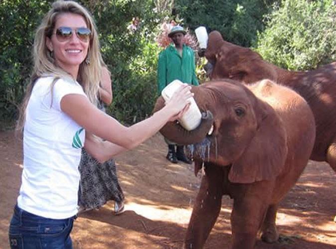 Gisele Bündchen : sublime dans un simple jean, elle nourrit...un bébé éléphant !