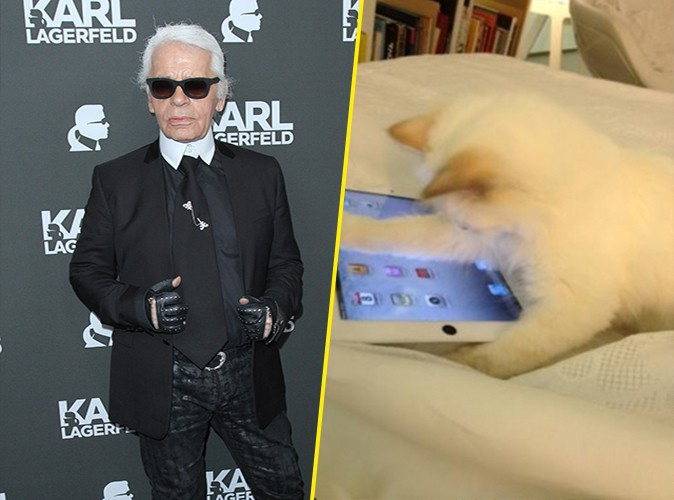 karl lagerfeld son chat se confie en interview pour la premi re fois. Black Bedroom Furniture Sets. Home Design Ideas