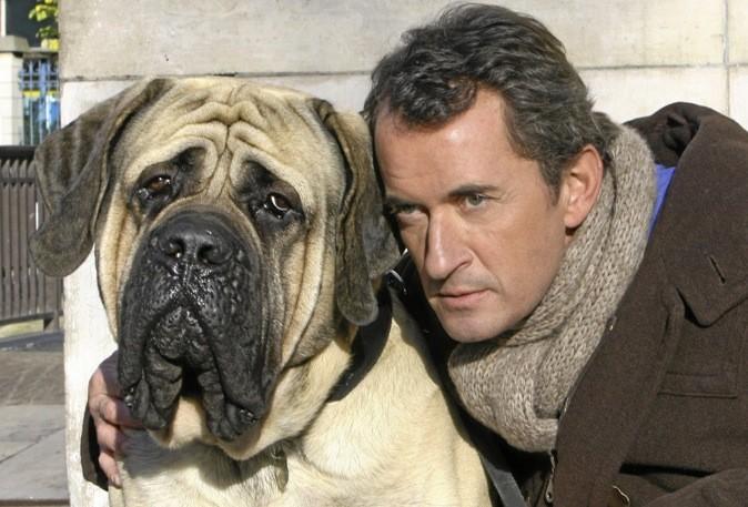 """Le téléfilm """"Hubert et le chien"""" sur NT1 à 22h30 !"""