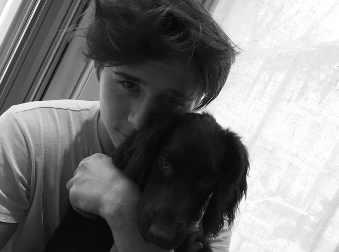 Olive Beckham : le nouveau bébé de la famille débarque sur Instagram !