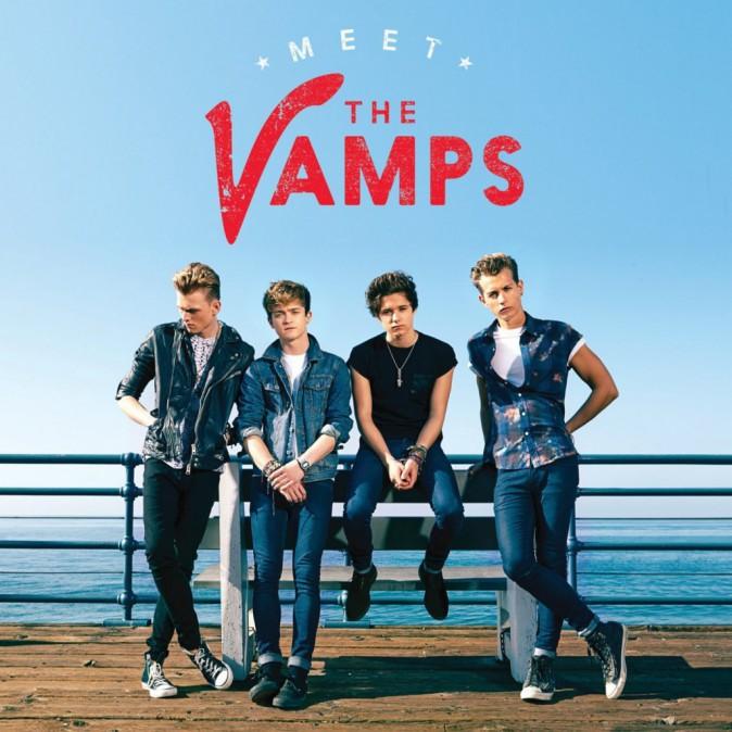 Meet the Vamps !