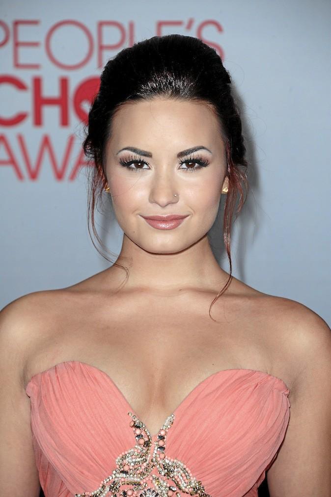 Il s'agit de Demi Lovato !