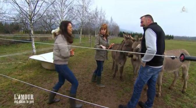 Oups ! Laetitia s'est fait mordre le doigt en donnant une carotte à un âne !
