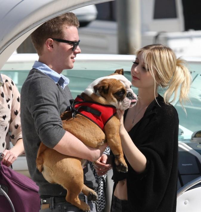 Première séance pour Lola le bulldog !