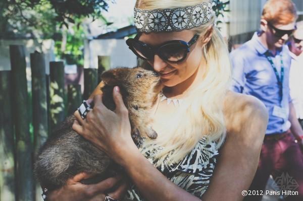 Elle a surement besoin d'affection en ce moment, heureusement que ce petit kangourou est là !