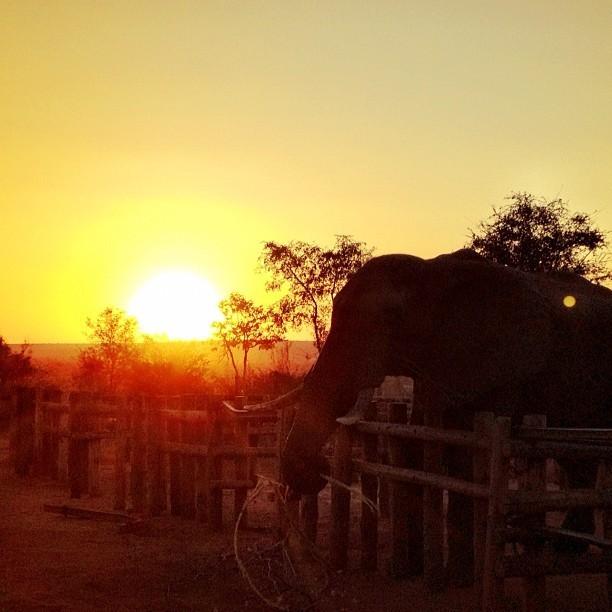 Sublime paysage africain