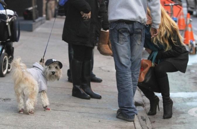 Elle a repéré un chien avec une casquette!