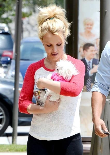 Britney Spears et son mini chien, le 16 mai 2013 en Californie