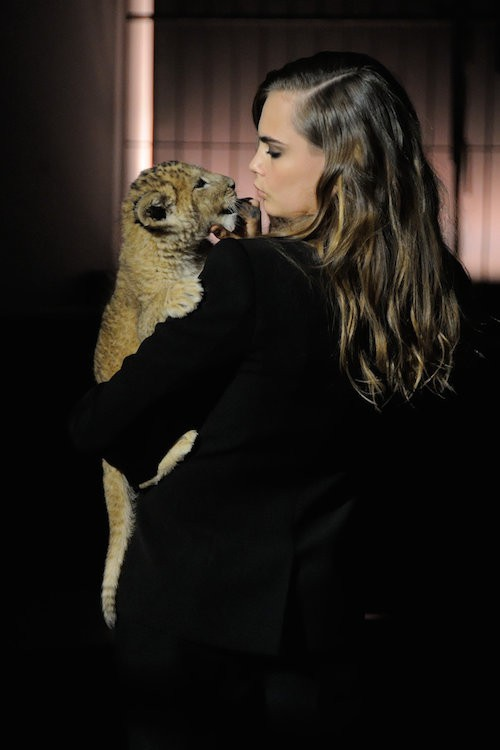 Photos : Cara Delevingne : la nouvelle ambassadrice Tag Heuer féline et complètement déjantée à Paris !