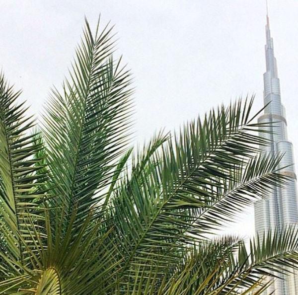 Caroline Receveur et Valentin Lucas en vacances à Dubaï