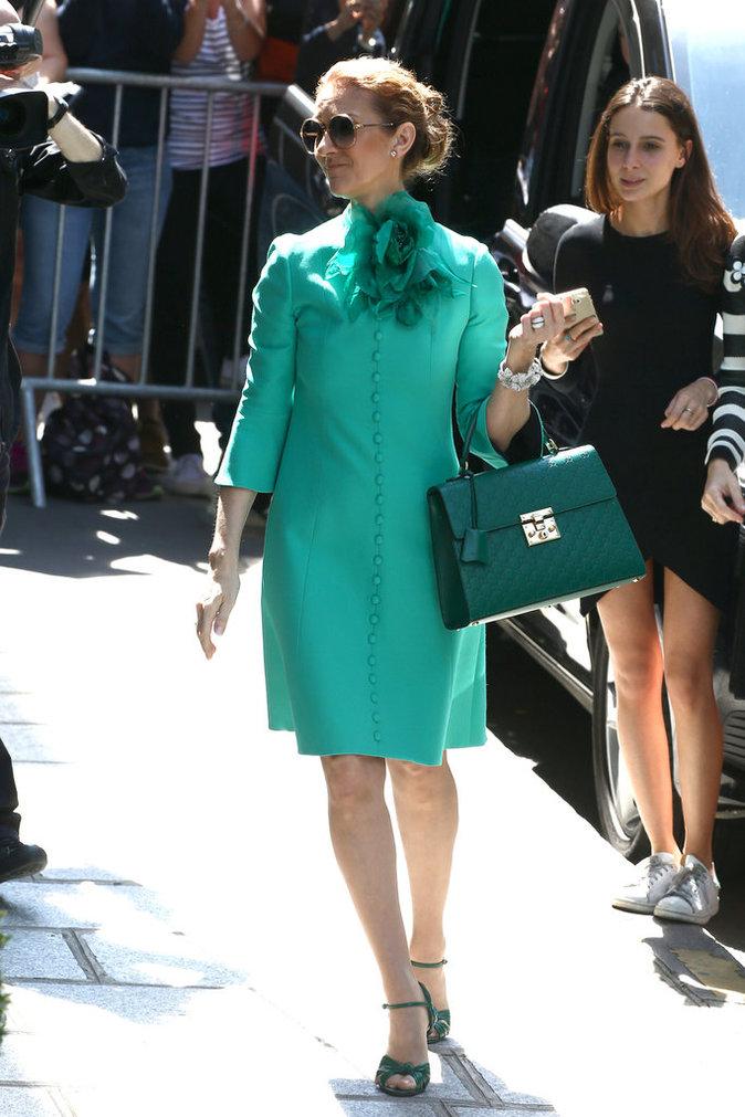 Céline Dion : un nouvel homme dans sa vie...