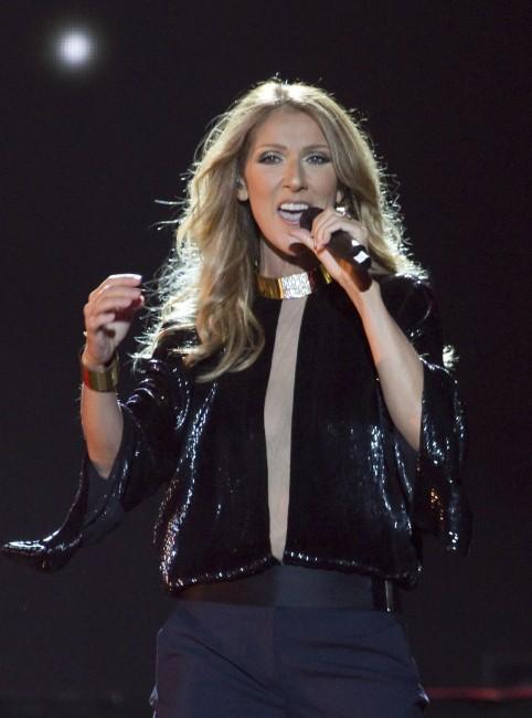 Céline Dion lors de son concert au Parc des Champs-de-Bataille, le 27 juillet 2013 à Québec.