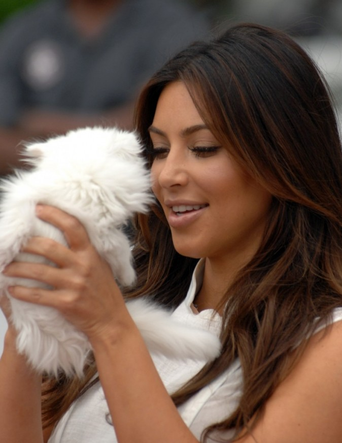 kim et son chat