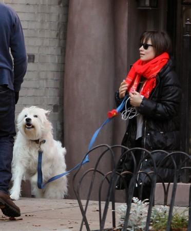 Paco, un chien presque aussi connu que sa maîtresse !
