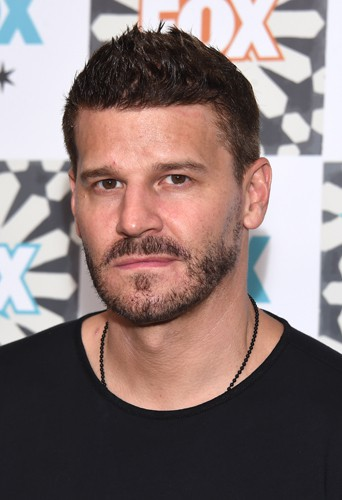 David Boreanaz à Los Angeles le 20 juillet 2014