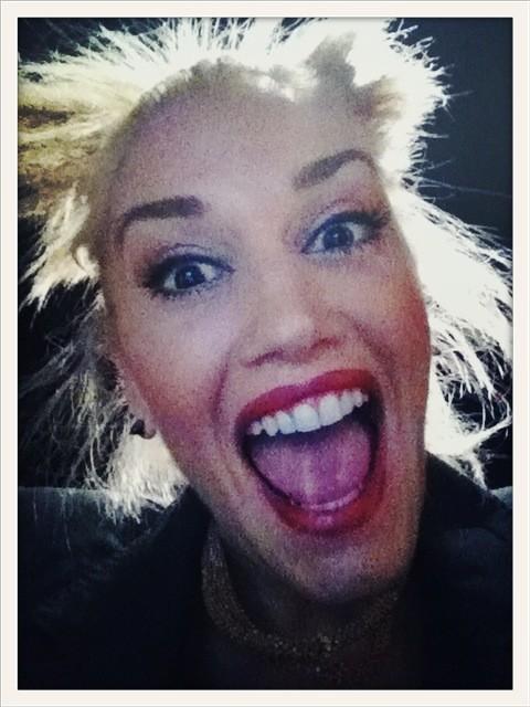 Gwen Stefani et sa folie sur Twitter !
