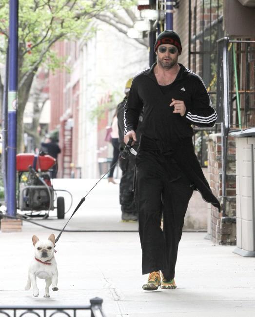 Hugh Jackman à la sortie de son club de gym le 15 avril 2013 à New York