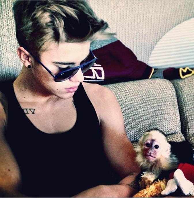 Justin Bieber avec son singe Mally avant qu'il ne lui soit confisqué...