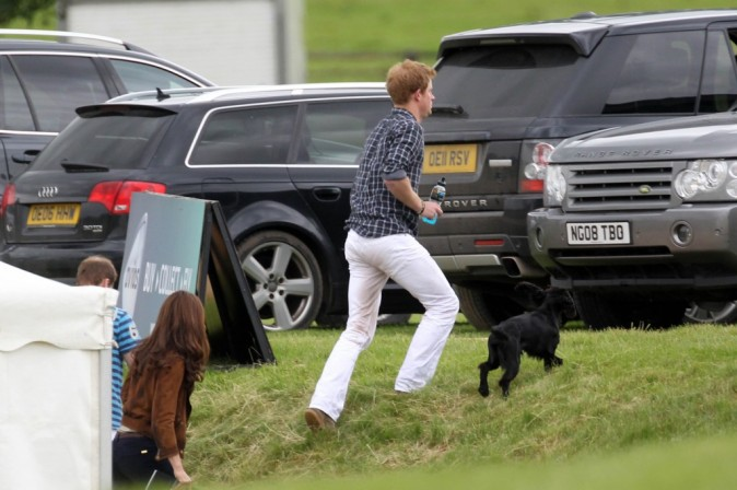 Kate Middleton, le prince William et le prince Harry lors d'un match de polo dans le Gloucestershire, le 17 juin 2012.