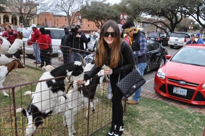 Au contact des animaux avec son sac de luxe !
