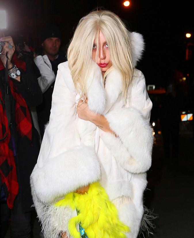 Lady Gaga le 28 février 2015
