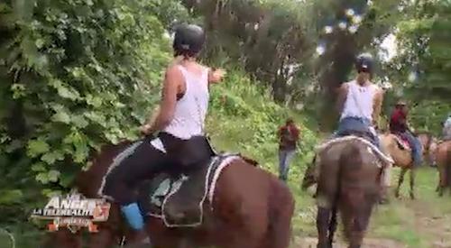 La balade à cheval tourne court !