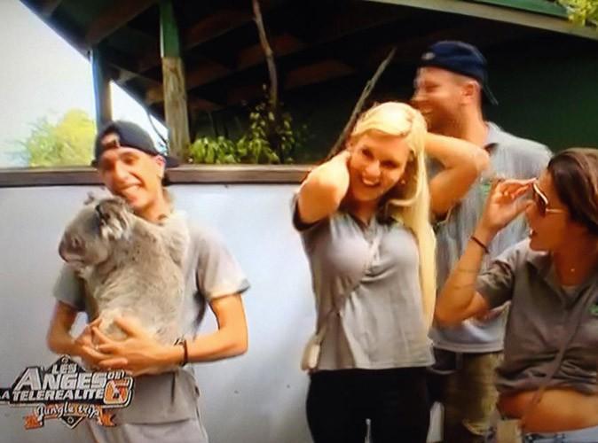 Moment câlin avec un koala !
