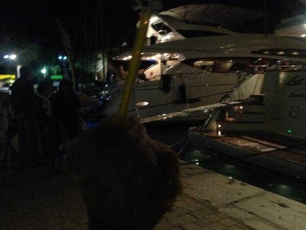 Petite vue sur les yachts