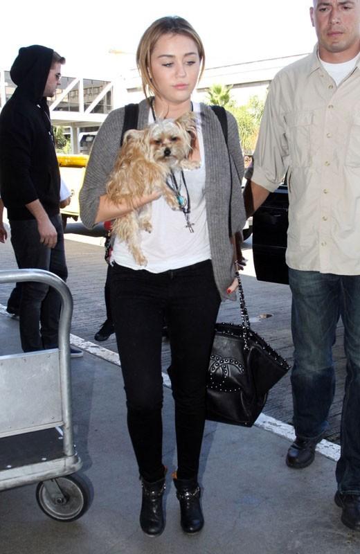 Miley n'aime pas voyager seule !