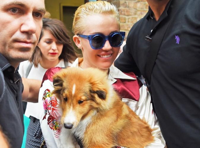 Photos : Miley Cyrus : elle reprend le chemin de sa tournée avec son adorable chien !
