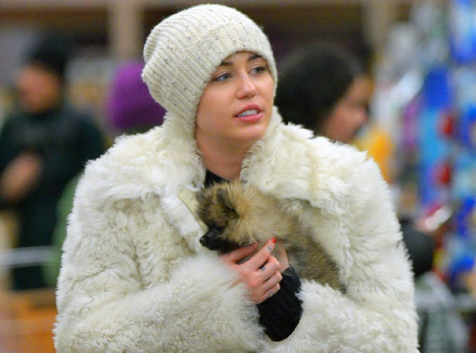 Miley Cyrus : première apparition avec sa nouvelle boule de poils !