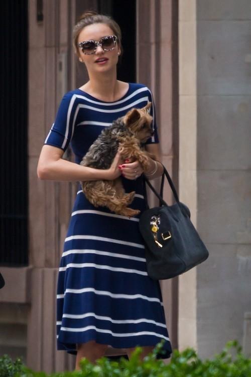 Photos : Miranda Kerr : elle a du chien dans les rues de New York !