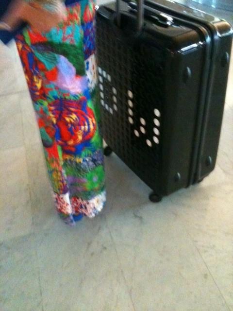 La valise aux initales de Delphine